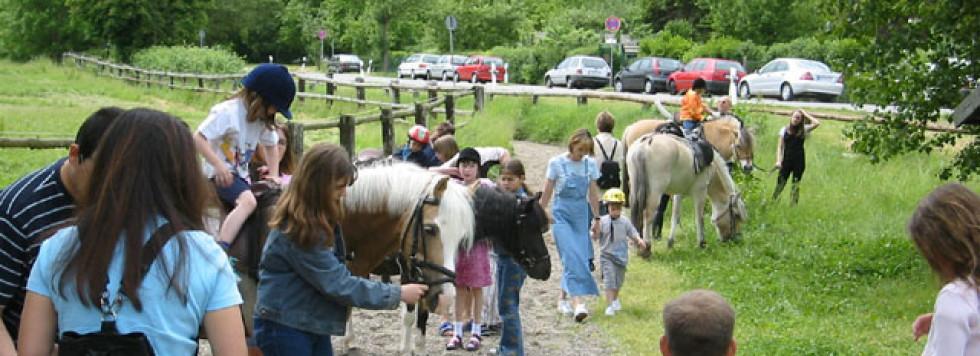 Ponyreiten findet wieder statt!